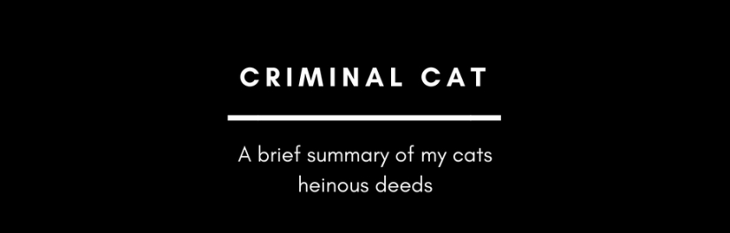 My cat is a hardened criminal